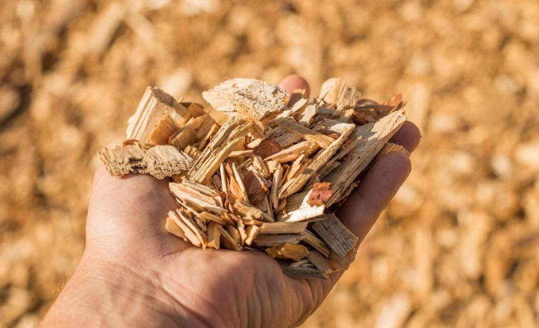 La Comunidad impulsa un nuevo modelo de gestión de residuos de materia orgánica