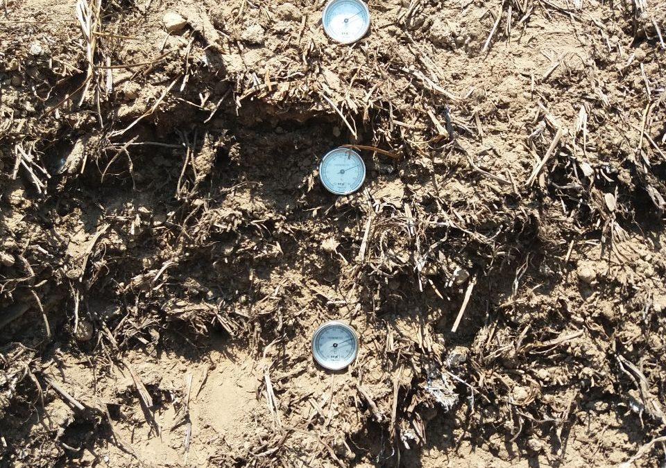 Taller de acogida y visita a huertas agrocompostadoras de Sierra Norte