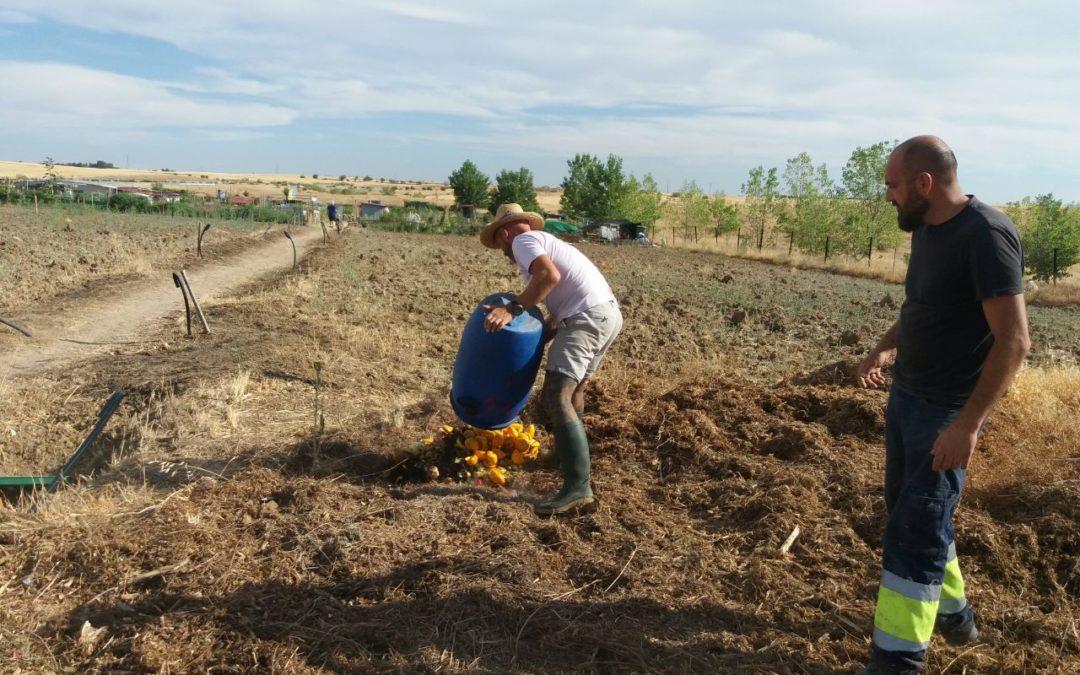 Beneficios sociales del Agrocompostaje